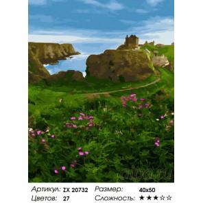 Количество цветов и сложность Шотландский замок  Раскраска картина по номерам на холсте  ZX 20732