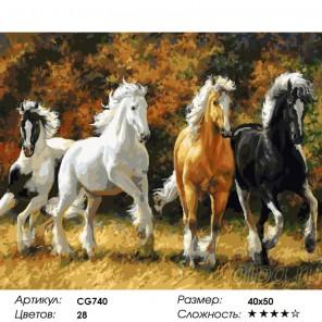 Сложность и количество красок  Разномастные Раскраска по номерам на холсте CG740