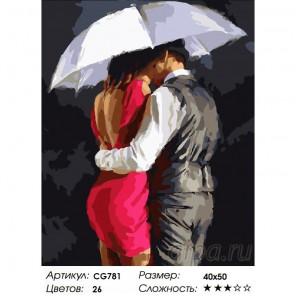 Сложность и количество красок  Романтика под зонтом Раскраска по номерам на холсте CG781