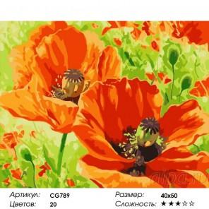 Сложность и количество красок  Маки Раскраска по номерам на холсте CG789