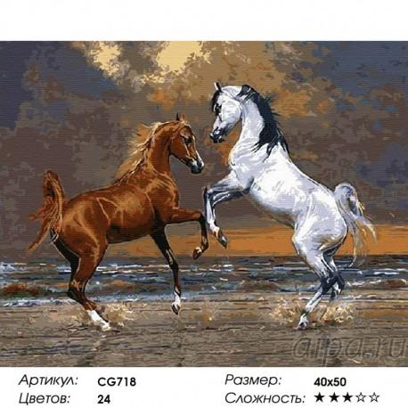 Сложность и количество красок Свобода Раскраска по номерам на холсте CG718