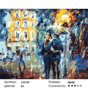 Сложность и количество красок  Свидание вечером Раскраска по номерам на холсте CG739