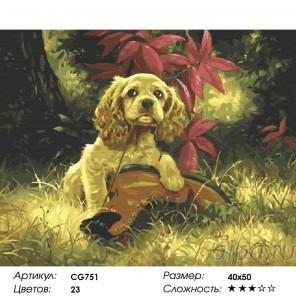 Сложность и количество красок  Щенок в саду Раскраска по номерам на холсте CG751