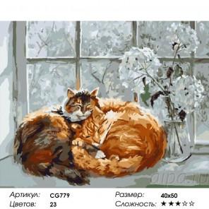 Сложность и количество красок  Кошачьи нежности Раскраска по номерам на холсте CG779