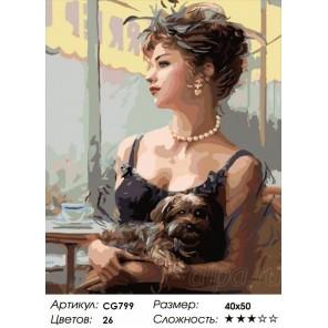 Сложность и количество красок  Дама с собачкой Раскраска по номерам на холсте CG799