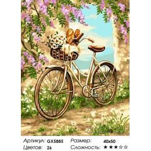 Количество цветов и сложность На пикник Раскраска картина по номерам на холсте