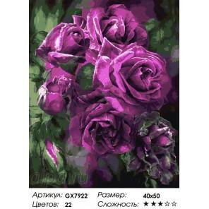 Сложность и количество цветов Лиловые розы Раскраска по номерам на холсте GX7922