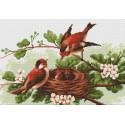 Птички Набор для вышивания Luca-S