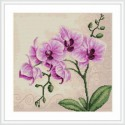 Орхидея Набор для вышивания Luca-S