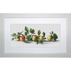 Яблоки Набор для вышивания Luca-S