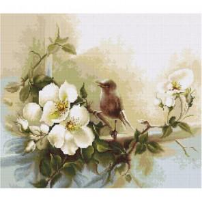 Птичка Набор для вышивания Luca-S