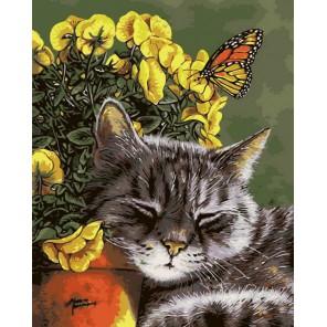 Спящий кот Раскраска по номерам на холсте