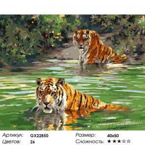 Количество цветов и сложность Плывущие тигры Раскраска картина по номерам на холсте GX22850