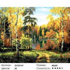 Количество цветов и сложность Дорожка к озеру Раскраска картина по номерам на холсте GX23169