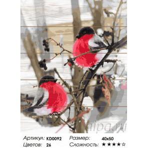 Сложность и количество цветов Дыхание зимы Картина по номерам на дереве KD0092