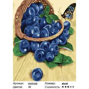 Количество цветов и сложность Голубика Раскраска картина по номерам на холсте GX21332