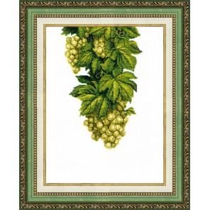 Янтарный виноград Набор для вышивания Чаривна Мить ВТ-137