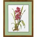 Красная орхидея Набор для вышивания Eva Rosenstand