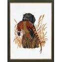 Собака и фазан Набор для вышивания Eva Rosenstand