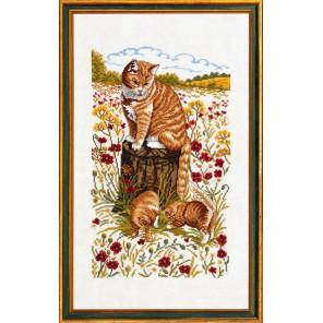 Коты Набор для вышивания Eva Rosenstand 14-181