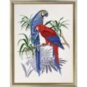 Два попугая Набор для вышивания Eva Rosenstand