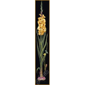 Желтый гладиолус Набор для вышивания Thea Gouverneur 3072.05