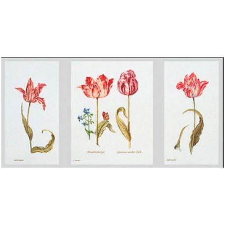 Тюльпаны Джейкоба Маррель и Джудит Лейстер, 16-й век Набор для вышивания Thea Gouverneur 786A