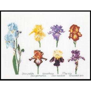 Группа цветов ириса Набор для вышивания Thea Gouverneur 3051
