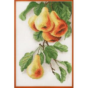 Груши по рисунку К. Кляйн Набор для вышивания Марья Искусница 06.002.12