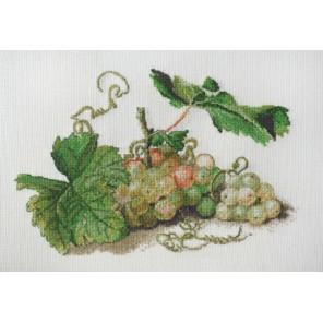 Ветка винограда по рисунку Ф. Толстого Набор для вышивания Марья Искусница 06.001.18