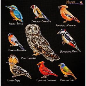 Птицы Набор для вышивания Марья Искусница 14.001.10
