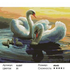 Сложность и количество цветов  Лебединая идиллия Алмазная мозаика на подрамнике GJ257