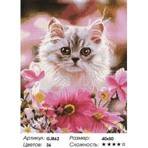 Сложность и количество цветов  Котенок в цветах Алмазная мозаика на подрамнике GJ862