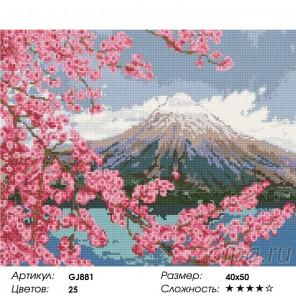 Сложность и количество цветов  Фудзияма Алмазная мозаика на подрамнике GJ881