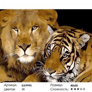 Сложность и количество цветов  Лев и тигр Раскраска по номерам на холсте GX9995