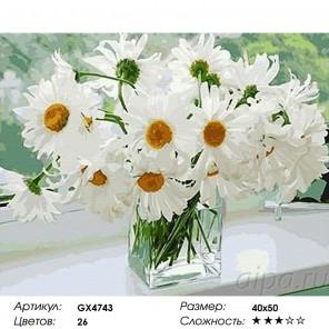 Сложность и количество цветов  Ромашки в вазе Раскраска по номерам на холсте GX4743