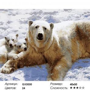 Сложность и количество красок  Полярные медведи Раскраска по номерам на холсте GX5030