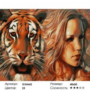 Сложность и количество красок  Эго Раскраска по номерам на холсте GX4642