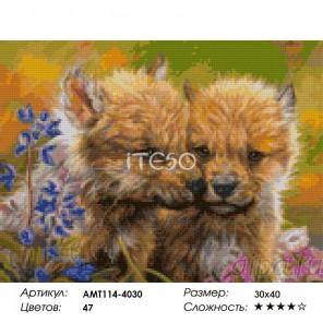 Количество цветов и сложность Волчата Алмазная мозаика на твердой основе Iteso