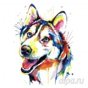 Разноцветный щенок Набор для вышивания VE001