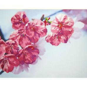 Краски весны Комплект для вышивания ТМ РИСУЕМ ИГЛОЙ