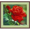 Красная роза Набор для вышивания бисером GALLA COLLECTION