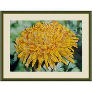 Хризантема Набор для вышивания бисером GALLA COLLECTION