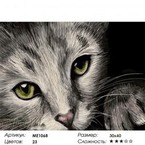 Количество цветов и сложность Зеленоглазый котик Раскраска картина по номерам на холсте Menglei ME1068