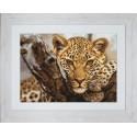 Леопард Набор для вышивания LUCA-S