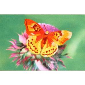Золотая бабочка Комплект для вышивания ТМ РИСУЕМ ИГЛОЙ