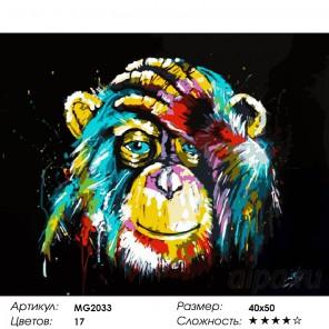 Радужная обезьяна Раскраска (картина) по номерам на холсте Menglei