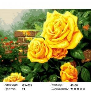 Сложность и количество цветов  Садовые желтые розы Раскраска по номерам на холсте GX4526