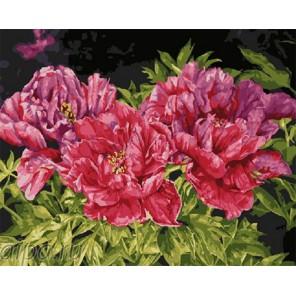 Красота пионов Раскраска по номерам на холсте GX5134