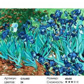 Сложность и количество красок  Ирисы (Ван Гог) Раскраска по номерам на холсте GX6445
